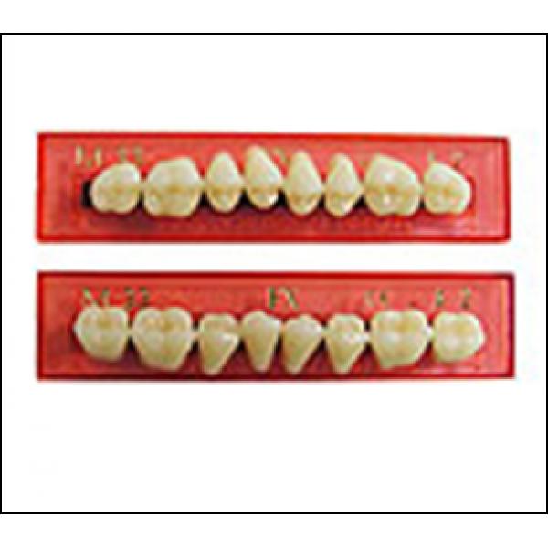 Зубы Naperce Posterior жевательные планка